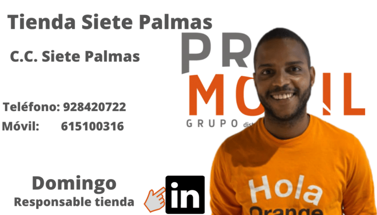Domingo Siete Palmas PROMOVIL